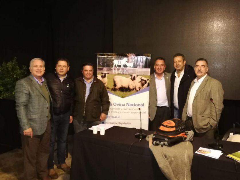 La cadena ovina fija nuevos desafíos en ArgenCarne