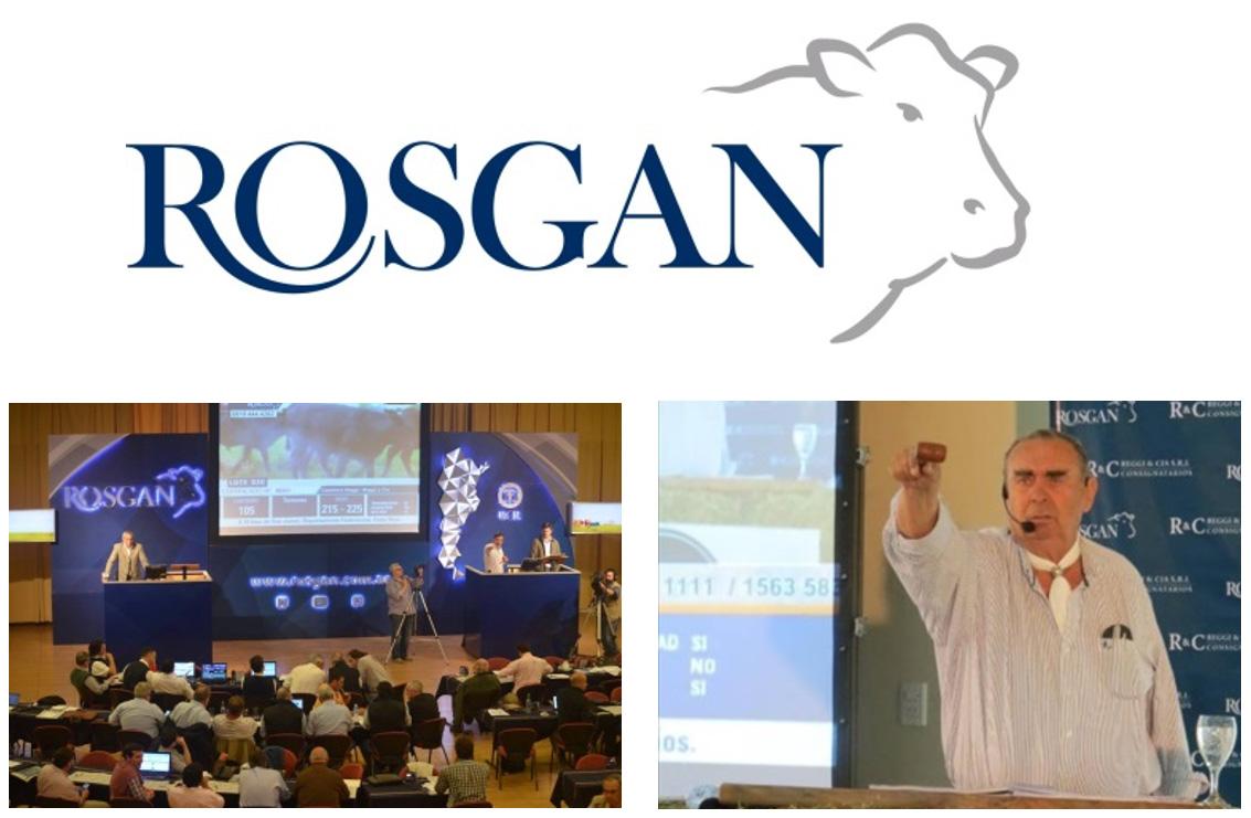 ROSGAN HARÁ UN GRAN REMATE ESPECIAL EN ARGENCARNE